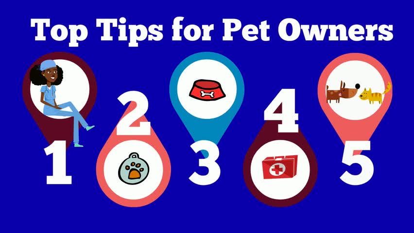Top Tips for Pet Owners by SPC Veterinary Technolo...