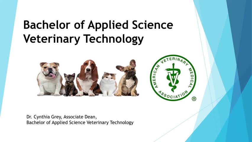 2020 SPC Veterinary Technology Degrees and Certifi...