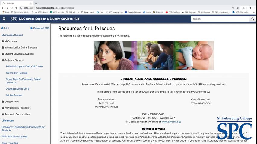Supporting Students with Life Issues, 10-17-18